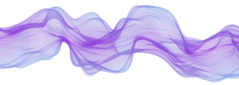 Taccuino digitale #8 – Il Wood Wide Web, il sogno perduto dell'Olivetti e il collasso del contesto